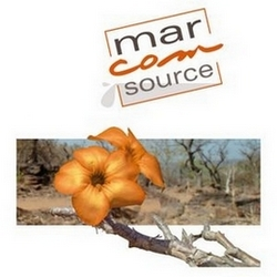 Marcom Source